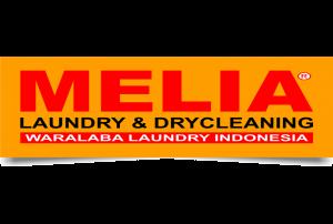 MELIA-300x100