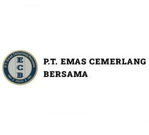 ecb-logo-white-menu-website